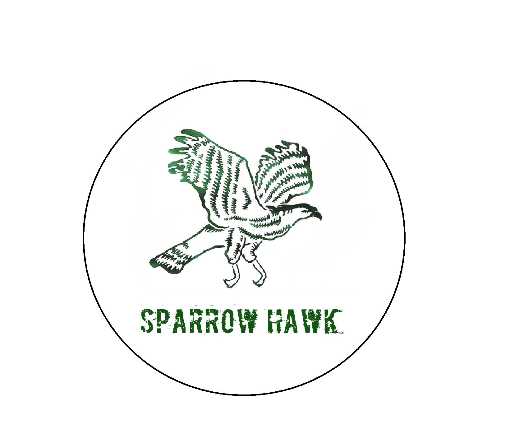 Sparrowhawk Motors IV